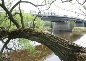 Pont de Scott