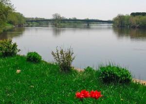 Rivière Chaudière